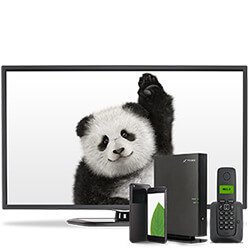 TELUS Home Services